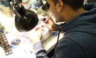 Réparation bobines - Van den Hul - Reparation cellules MC