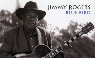 Jimmy Rogers - Blue Bird - Analogue Productions - Analogue Productions